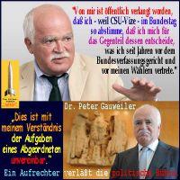 SilberRakete_DrPeterGauweiler-Aufgaben-Abgeordneter-unvereinbar-Ein-Aufrechter-verlaesst-die-Politik