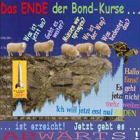SilberRakete_Ende-Bondkurse-Schafe-ratlos-Schildkroete-Nicht-weiter-geht-baden-Kurse-abwaerts