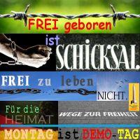 SilberRakete_FREI-geboren-ist-Schicksal-Frei-zu-leben-nicht-Ketten-Heimat-Wege-zur-Freiheit-Montag-Demo-Tag3