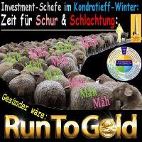 SilberRakete_Investment-Schafe-im-Kondratieff-Winter-Zeit-fuer-Schur-Schlachtung-Run-to-GOLD