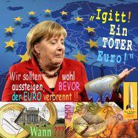 SilberRakete_Merkel-Igitt-Toter-Euro-Reichstag-Bundestag-Aussteigen-bevor-Euro-verbrennt-Wann3