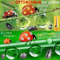 SilberRakete_Optimismus-der-groessten-SILBER-Bugs-Teurer-als-GOLD-Marienkaefer-Wassertropfen2