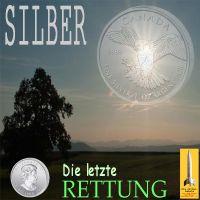 SilberRakete_SILBER-Die-letzte-Rettung-Falke-Landschaft-Baum-Sonne2