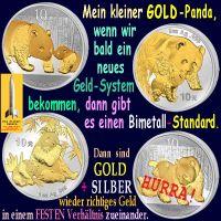 SilberRakete_SILBER-GOLD-Panda-Bald-neues-Geldsystem-Bimetall-Standard-Richtiges-Geld-Festes-Verhaeltnis