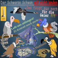 SilberRakete_SchwarzeSchwan-nicht-landen-EU-Euro-nur-noch-fuer-Geier-Ouzu-Mahlzeit-Dollar