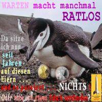 SilberRakete_Warten-macht-manchmal-ratlos-Pinguin-bruetet-auf-GOLD-SILBER-Liberty2