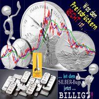 SilberRakete_Was-den-Preisdrueckern-Recht-ist-den-SILBER-Bugs-billig-Kurs10Jahre-LIbertad-Barren