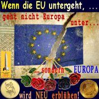 SilberRakete_Wenn-EU-untergeht-wird-Europa-neu-erbluehen-Fahne-EU-kaputt-Rosen-Goldmuenzen2
