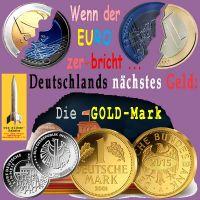 SilberRakete_Wenn-Euro-zerbricht-Deutschlands-naechstes-Geld-GOLDMark-SILBER-Reichstag