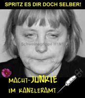 FW-Schweinegrippe-Merkel