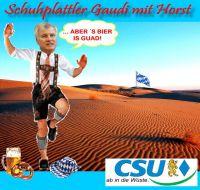 FW-Seehofer-in-die-wueste