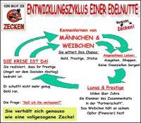 FW-entwicklungszyklus-edelnutten