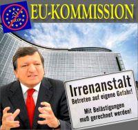 FW-eu-irrenhaus