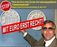 FW-euro-waigel-truemmer