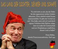 FW-euro-zitat-koehler
