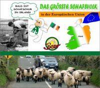FW-irland-unter-druck
