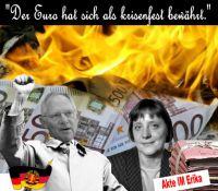 FW-merkel-schaueble-euro