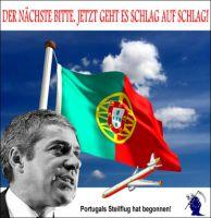 FW-portugal-pig