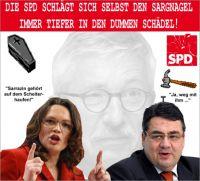 FW-sarrazin-spd