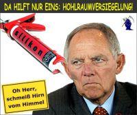 FW-schaeuble-eu-wirtschaftsregierung