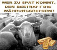FW-schafe-waehrungsreform