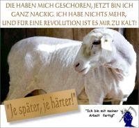 FW-waehrungsreform-schafschur