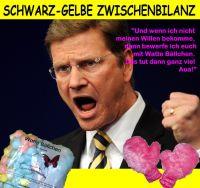 FW-westerwelle-schwarz-gelbe-bilanz