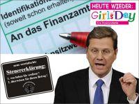 FW-westerwelle-steuererklaerung