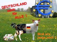 HP-Deutschland-zahlt-fuer-alle