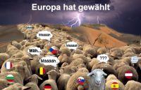 PW-Europa-hat-gewaehlt