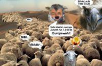 PW-Europawahl09