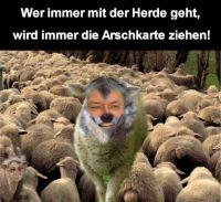 PW-herdentrieb_midres