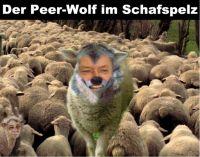 PW-peer-wolf
