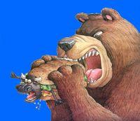 bear_eats_bull2-lores
