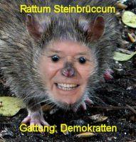 rattesteinbrueck